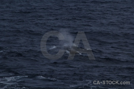 Drake passage sea water day 4 spray.