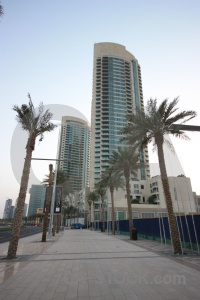 Dubai building palm tree uae middle east.
