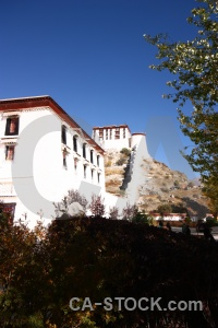 East asia potala palace tree unesco buddhist.