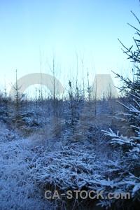 Europe cyan karlskrona frost sweden.