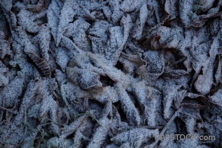 Europe frost sweden texture karlskrona.