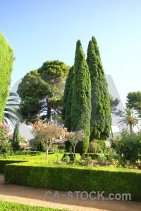 Europe garden granada green spain.