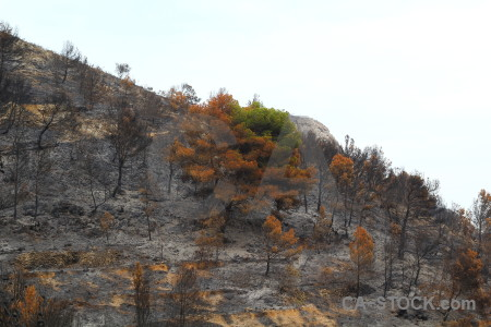 Europe montgo fire javea ash burnt.