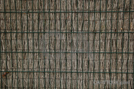 Europe spain bamboo javea texture.