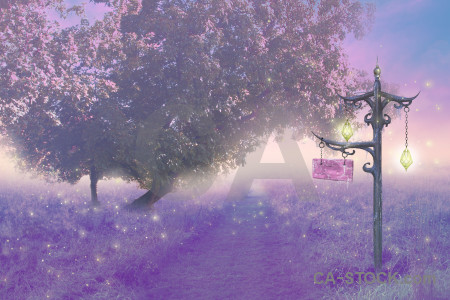 Fantasy purple backgrounds pink premade.