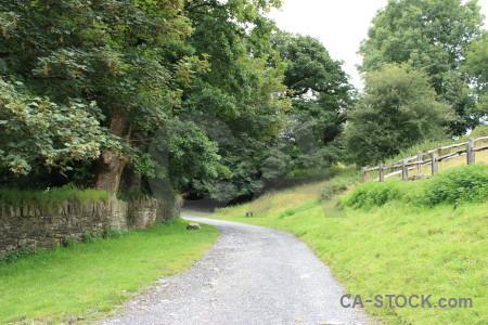 Field green path.