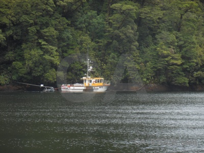 Fiordland boat new zealand fiord south island.