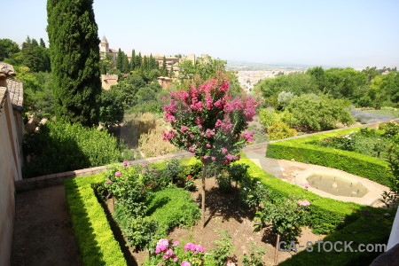 Flower fortress la alhambra de granada garden hedge.