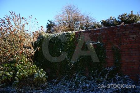 Frost cyan wall blue.