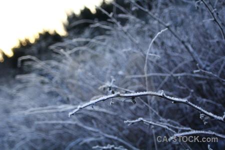 Frost europe karlskrona sweden.