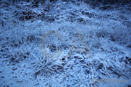 Frost karlskrona blue europe sweden.