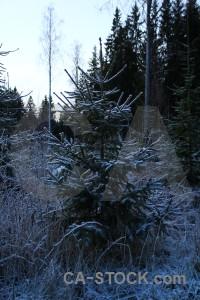 Frost sweden karlskrona white blue.
