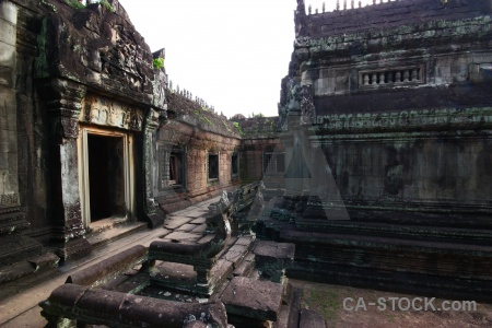 Fungus asia sky pillar cambodia.