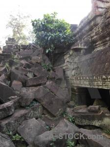 Fungus buddhism buddhist preah khan temple.