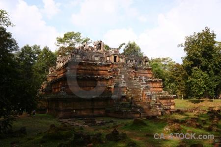 Fungus lichen stone angkor thom southeast asia.