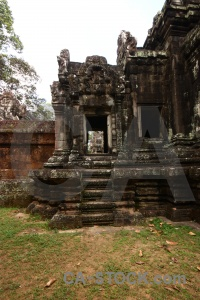 Fungus ruin cambodia angkor sky.