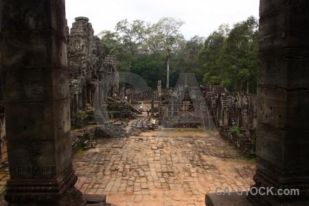 Fungus step unesco lichen khmer.