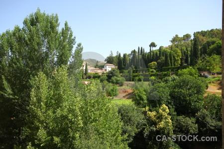 Garden la alhambra de granada park green palace.