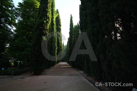 Garden park spain europe granada.