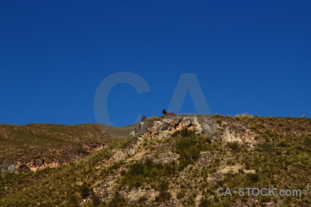 Grass argentina salta tour 2 escoipe altitude.