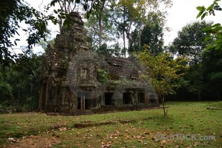 Grass buddhism fungus block angkor.