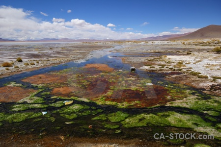 Grass cloud bolivia landscape laguna chalviri.