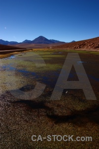 Grass el tatio chile rock altitude.