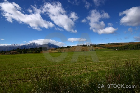 Grass field new zealand cloud landscape.