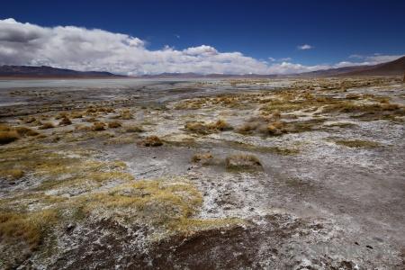 Grass landscape sky mountain bolivia.