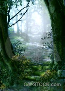 Green backgrounds fantasy premade.