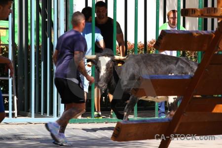 Green bull horn person spain.