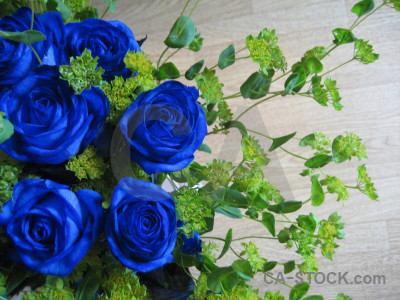 Green flower rose bouquet blue.