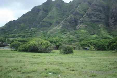 Green mountain field.