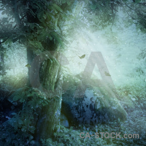 Green premade fantasy backgrounds.
