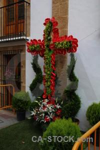 Green red spain javea flower.