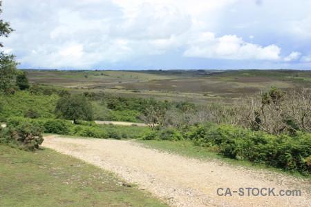 Green white field landscape.