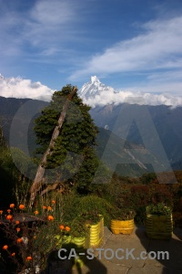 Himalayan sky landscape asia machapuchre.