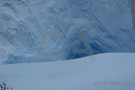 Ice drake passage iceberg penguin animal.
