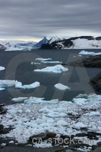 Ice sea marguerite bay horseshoe island iceberg.