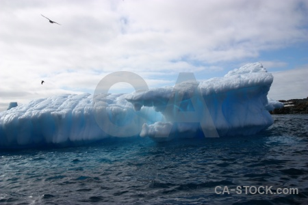 Ice south pole sky argentine islands bird.