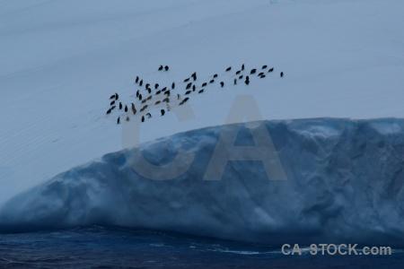 Iceberg day 4 water sea drake passage.