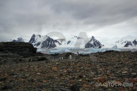 Iceberg snow snowcap antarctic peninsula antarctica.