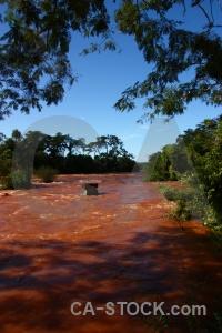 Iguassu falls south america argentina tree sky.