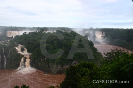 Iguassu falls spray tree iguazu brazil.
