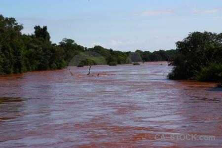 Iguazu falls iguacu unesco iguazu river tree.