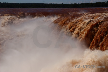 Iguazu falls iguassu iguacu unesco tree.