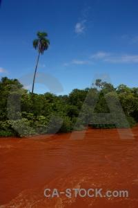Iguazu falls sky river tree iguazu.