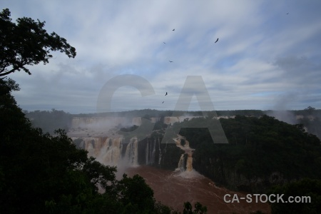 Iguazu river tree brazil sky iguazu falls.