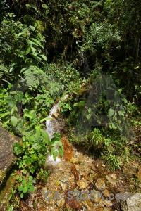 Inca altitude peru stream south america.