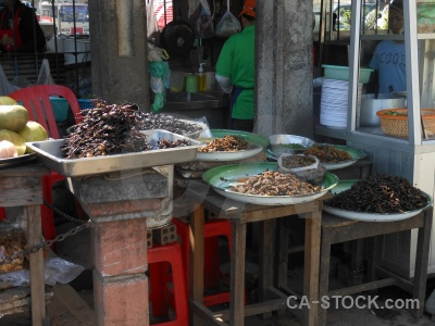 Insect cambodia market animal fried.